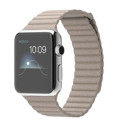 stone-leather-42mm-apple-watch
